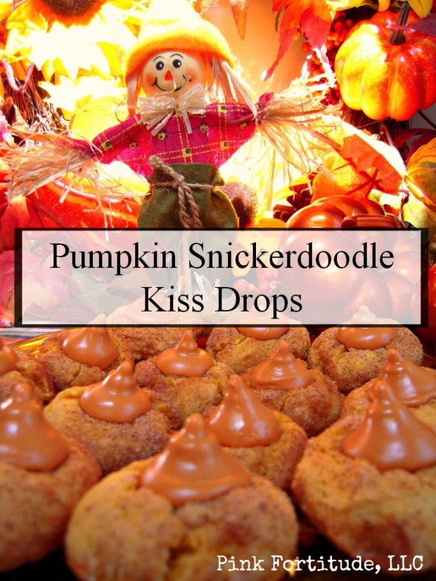 Pumpkin Snickerdoodle Kiss Drops by The Coconut Head's Survival Guide