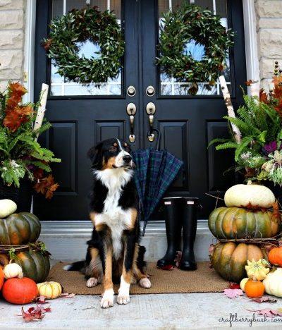 Fall Inspiration - front porch fall 2014 craftberry bush