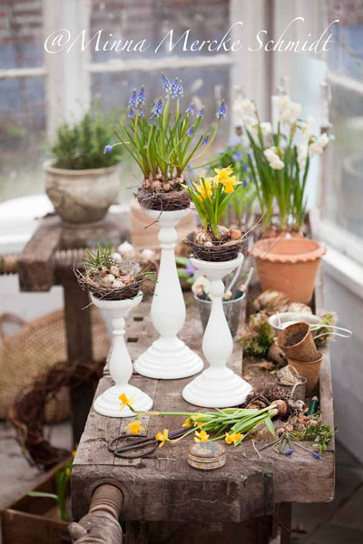Spring Decorating Ideas: Bulbs Planted in Bird Nests via Blomsterverkstad