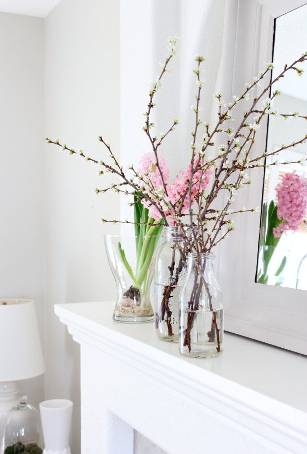 Spring Decorating Ideas - Forcing Branches to Bloom Indoors - Satori Design for Living