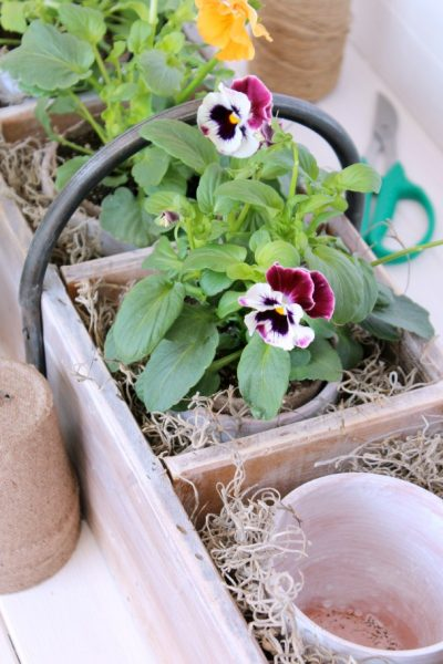 Vintage Tool Box Turned Flower Planter- Gardening Project for the Outdoor Extravaganza hosted by Satori Deign for Living