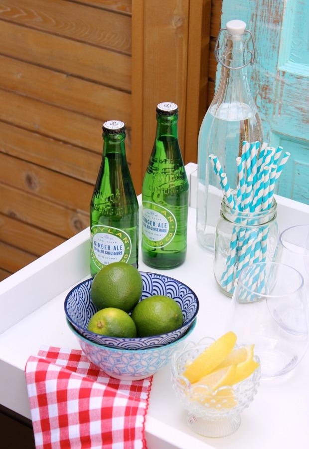 DIY Beverage Cart for Outdoor Entertaining - Tips for Putting Together a Bar Cart - Satori Design for Living
