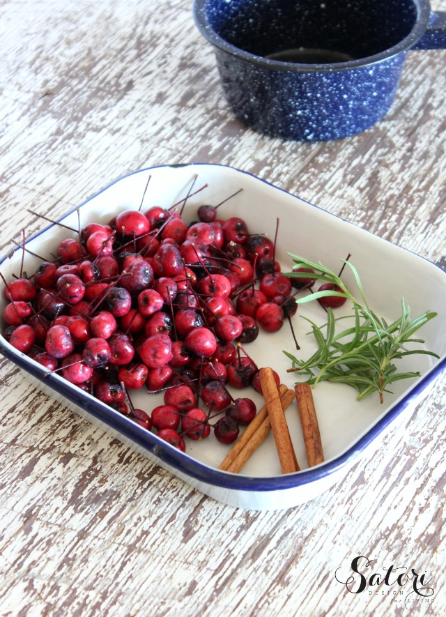 Fall Simmer Pot Ingredients - Crabapples, Rosemary and Cinnamon Sticks in Enamelware Tray