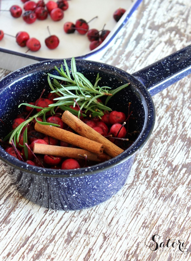 Fall Simmer Pot with Crabapples, Cinnamon Sticks and Rosemary in Enamelware Pot