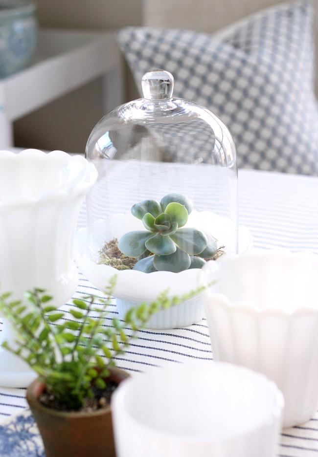 Succulent Cloche Terrarium - Spring Decorating Ideas Using Plants