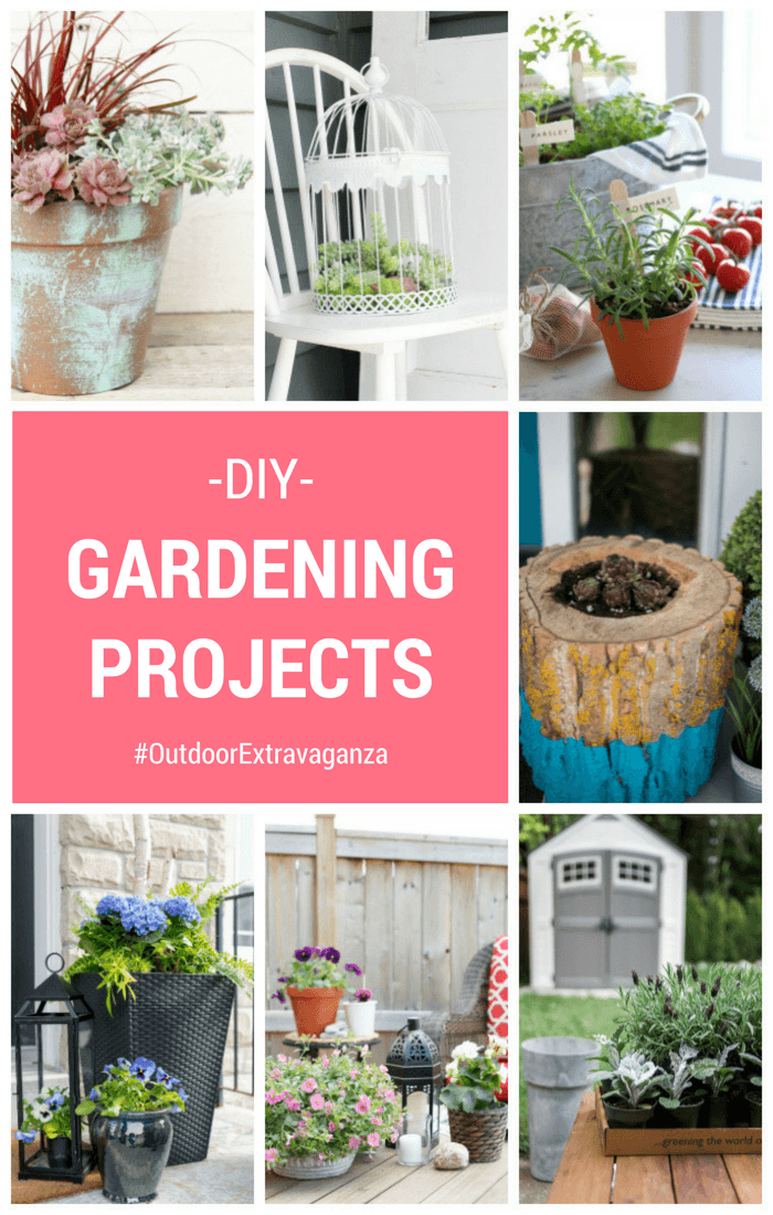 DIY Gardening Projects for the Outdoor Extravaganza