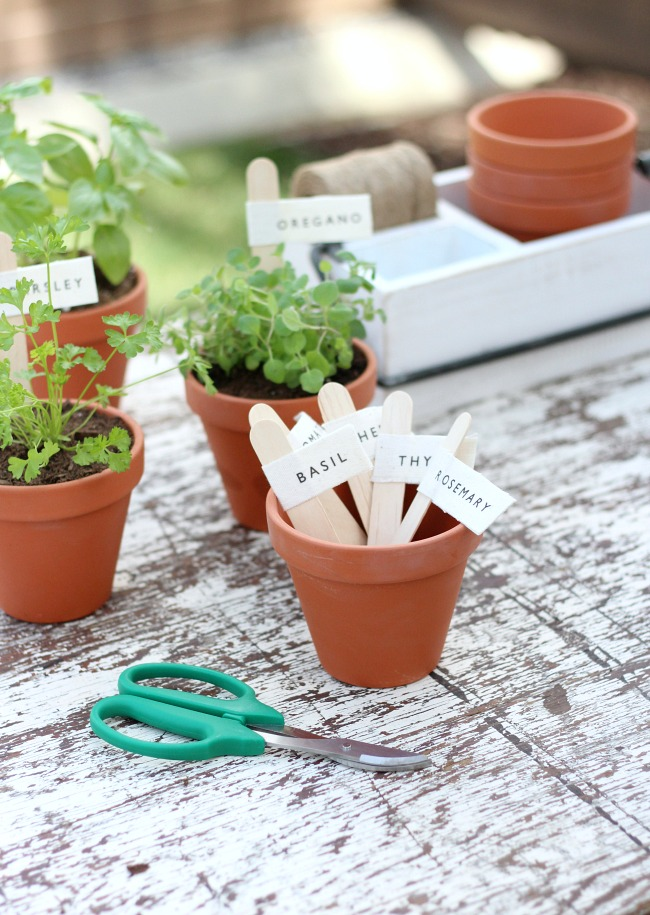 DIY Potted Herb Markers