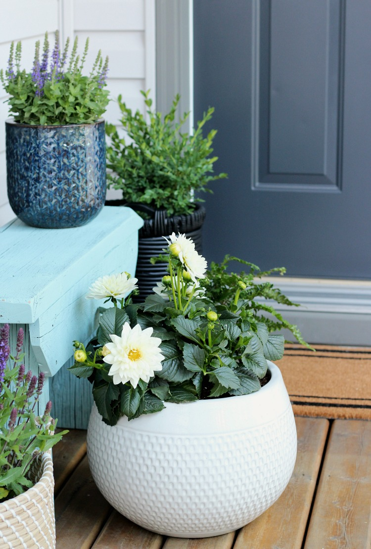 Pretty Front Porch with Distressed Aqua Bench and Potted Flowers - Satori Design for Living