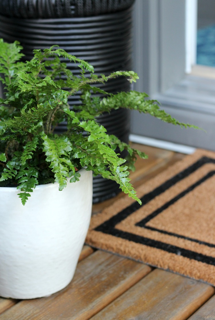 Potted Fern in White Pot - Front Porch Decor