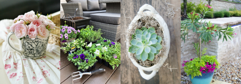Plant and Flower Project Ideas - Outdoor Extravaganza 2018