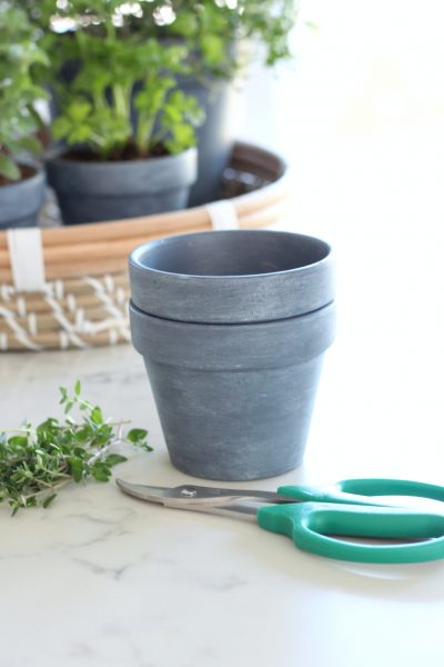 Concrete Painted Pots with Herbs - DIY French Vintage Decor - Satori Design for Living
