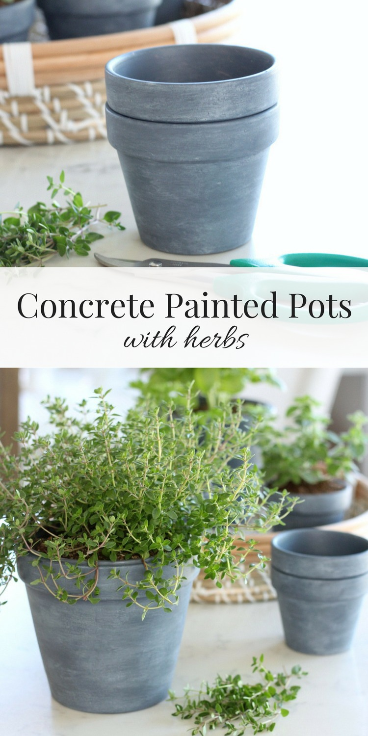 Learn how to create these concrete painted pots that were inspired by my friend Jamie's new book, French Vintage Decor. Perfect for herbs and more! Satori Design for Living