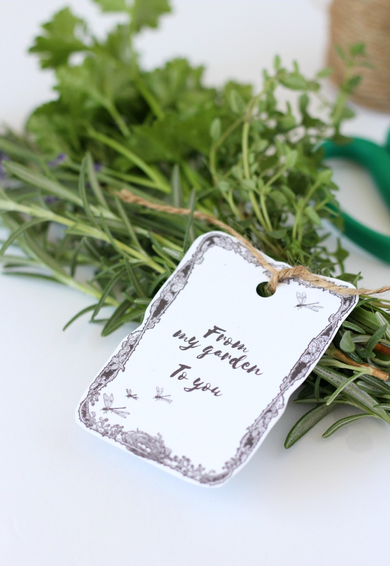 Herb Bouquet with From My Garden Printable Gift Tag - Satori Design for Living