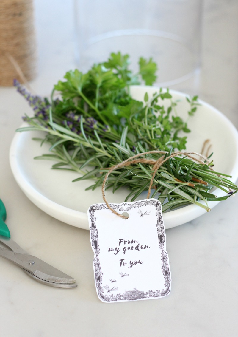 Herb Garden Bouquet with Printable Gift Tag - Satori Design for Living