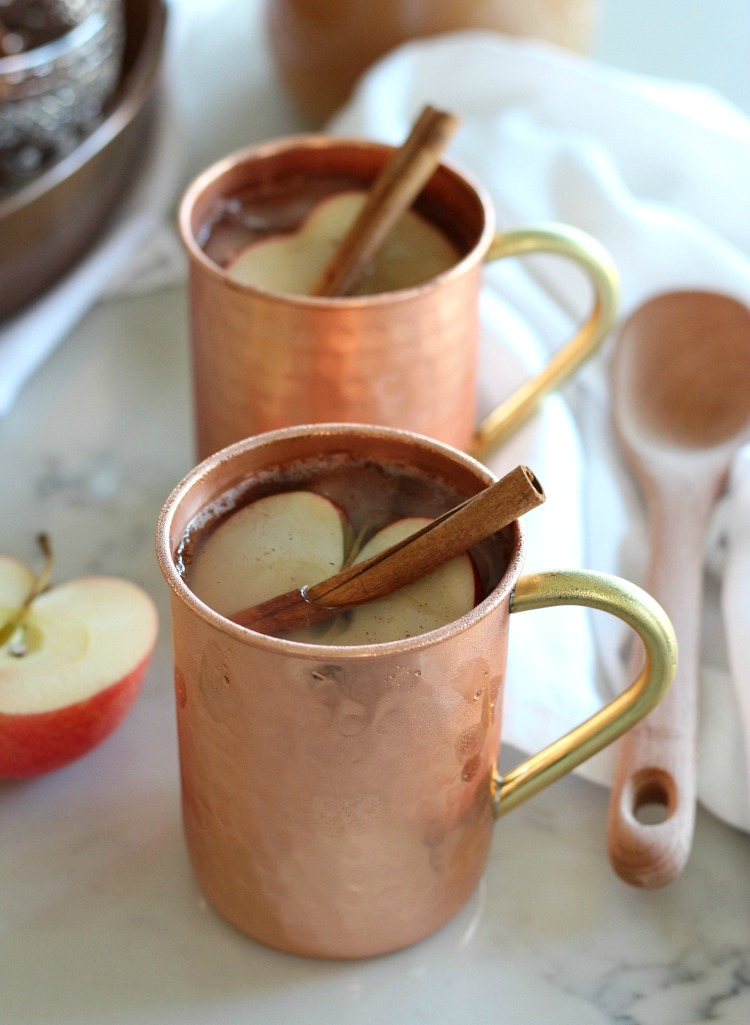 Spiked Apple Cider Fall Drink Recipe with Apple Slice and Cinnamon Stick - Cold or Hot Apple Cider Cocktail with Rum