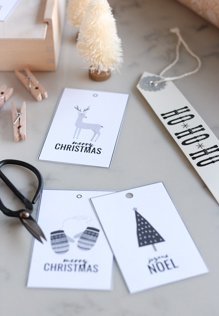 Winter Theme Printable Christmas Gift Tags with Deer, Mittens, Tree and More