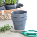 Concrete Painted Terracotta Pots with Herbs