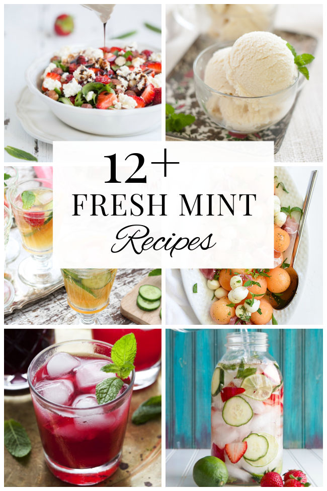 Fresh Mint Recipes, Including Salads, Drinks, Desserts and More