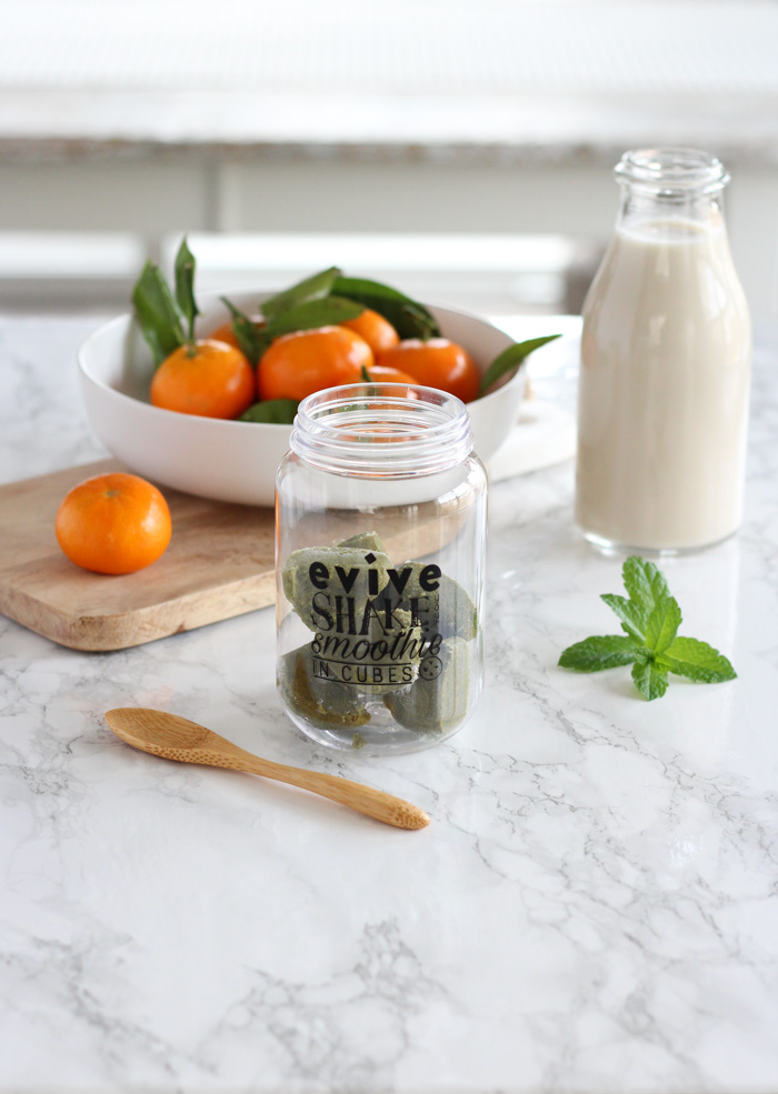 Jar with Evive Frozen Smoothie Cubes