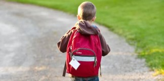 Little boy with a backpack going to school