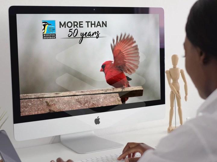 Houston Audubon More Than Website
