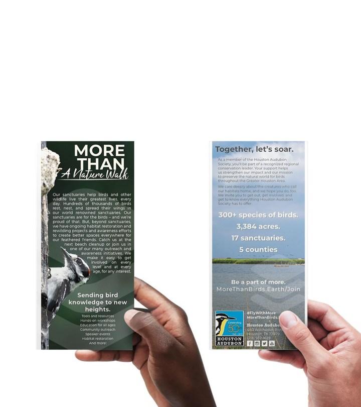 Houston Audubon Rack Cards class=