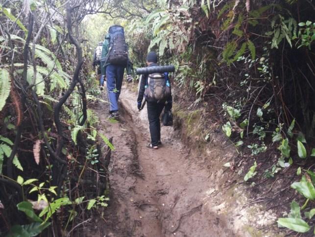 satriabajahitam.com - pendakian gunung cikuray 4