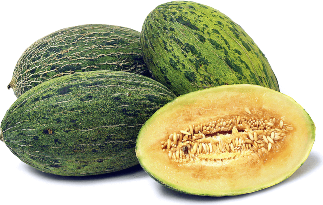 santa claus melon pictures