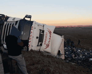WATCH | Driver crashes truck while trying to reach his cellphone