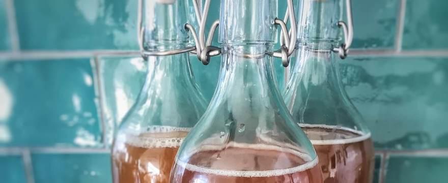 Kombucha Rezept (Zutaten und Anleitung), Wirkung und Gesundheit6 Minuten Lesezeit