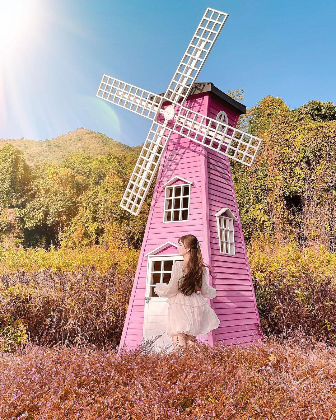 色彩繽紛的荷蘭風車亦係必打卡的景點!(圖片來源:IG@louiselee)