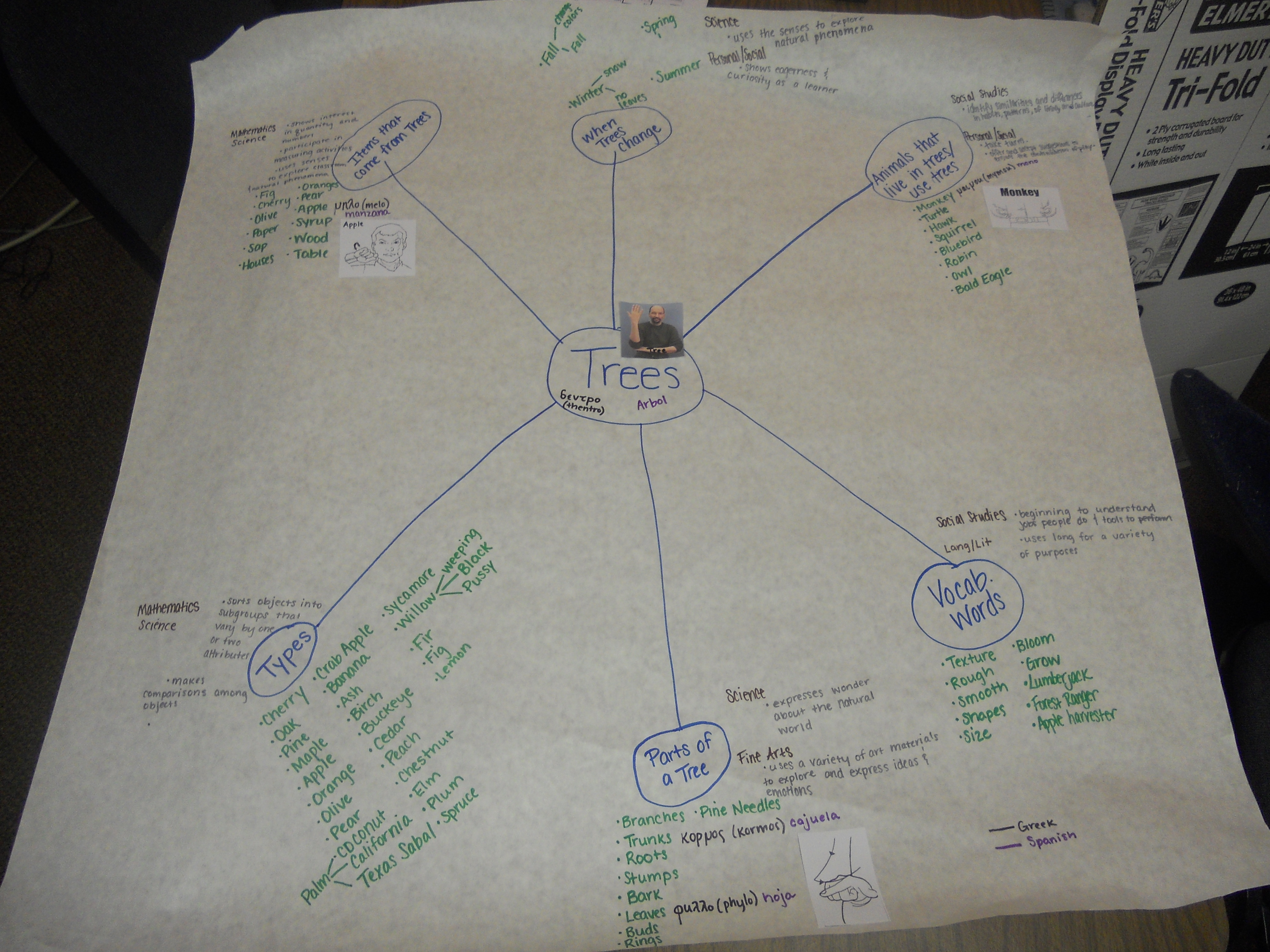 Anticipatory Web
