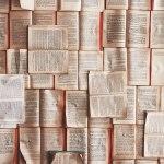 Portugese weetjes: literatuur