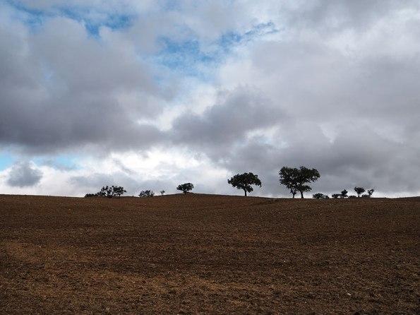 Weetjes Alentejo | Saudades de Portugal