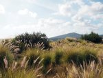 Algarve wandeltips | Saudades de Portugal