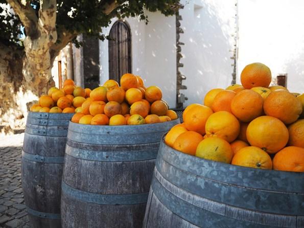 Sinaasappels Algarve | Saudades de Portugal