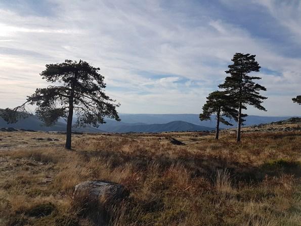 Parque Natural do Alvão   Saudades de Portugal