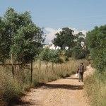 Wandelen op de Via Algarviana