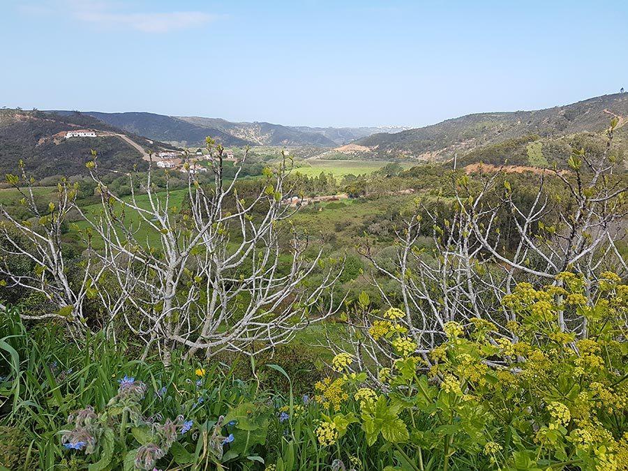 Gastblog: Op Ontdekking in Aljezur