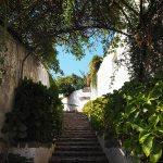 Daarom Algarve