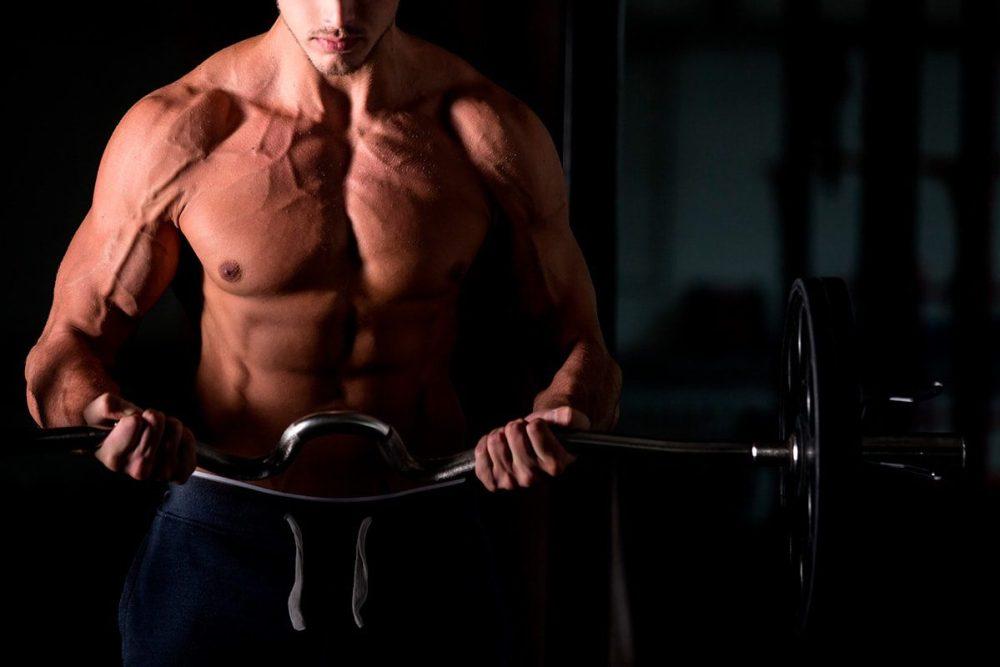 crescer músculos