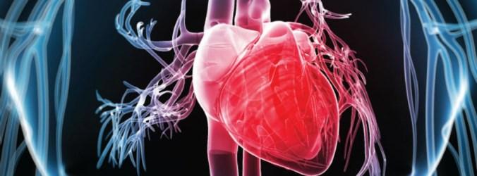 Uma em cada três pessoas com diabetes tipo 2 tem doença cardiovascular estabelecida