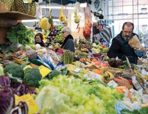Portugueses sobrestimam comportamentos e estilo de vida saudável