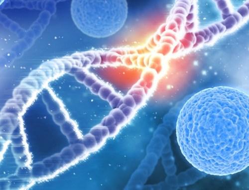 Baixos níveis de adiponectina podem aumentar risco de DCV