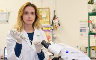 Margarida Fardilha - investigadores
