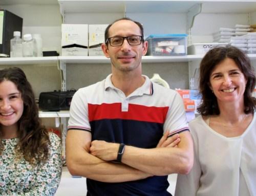 UC recebe financiamento para estudar efeitos de stress crónico no cérebro