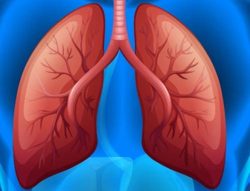 """""""O cancro do pulmão não tira férias"""" alerta para os sintomas da doença"""