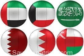 How to convert the GCC countries driving license to KSA driving Licence-SaudiExpatriate.com