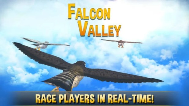 Falcon Valley وادي الصقور