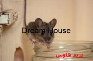 طرد الفئران بالاعشاب